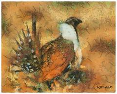 Sage grouse - Save its habitat (Leo Bar) Tags: nature birds illustration painting wildlife northamerica habitat preservation protectedspecies leobar pixinmotion