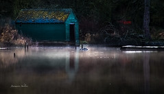 In The Boat House (jeanmarie shelton) Tags: morning light house mist lake water colors fog architecture reflections landscape haze boathouse waterscape jeanmarie jeanmariesphotography jeanmarieshelton jeanmariesphotographysmugmugcom