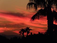 The colours of sunset (atlasta97) Tags: b sunset arizona sky sun sexy beautiful smiling america perfect bright antique awesome badass adorable peaceful az s american p sunrays amature atlasta