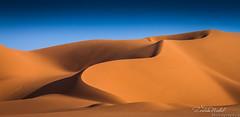 The beauty of the desert (Algeria) (zedamnabil) Tags: voyage travel sunset art tourism sahara golden algeria sand desert dunes curves silk sable adventure algerie goldenhour silky algerian  canon50mm14  illizi canon7d dzflickrs zedamnabil