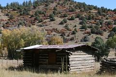 IMG_3983 Log Cabin (Ron_3) Tags: ranch mountain golden log cabin colorado hunting bluesky brush sage sanjuan logcabin aspen tinroof rockys