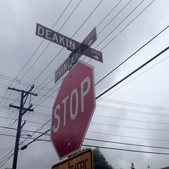 (Pamela Rouse) Tags: streetsign angles telephonewires berkeleyca southberkeley halcyoncommons