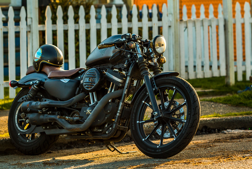 The World's Best Photos of portrait and sportster - Flickr Hive Mind