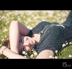 Daisys [15/52] (Marc A. Sporys | photholics) Tags: light sun canon silver bokeh 101 nathalie setup bounce marcasporys photholics