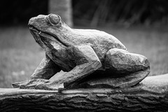 Wooden frog (technodean2000) Tags: wood city uk gardens wales nikon south cardiff carving sophia lightroom d610