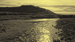 Golden Stream (ZeroOne) Tags: mountain nature water monochrome creek river landscape gold golden iceland stream outdoor duotone brook sparkling epl3