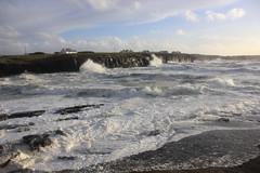 IMG_8370 (DaveGifford) Tags: ireland spanishpoint wildatlanticway