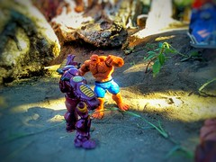 ThingBuster?.. It's CLOBBER'N TIME!!! (shefner77) Tags: family light summer color nature fun toys outdoors four fan fight brawl rocks play little action thing sunny super ironman collection fantasy hero comicbook scifi match sciencefiction strength fatherandson hulk marvel universe mighty makebelieve figures hasbro pretend strongest fatastic hulkbuster