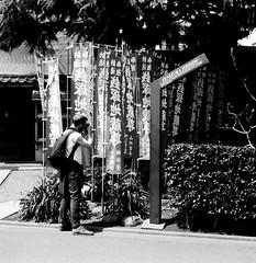 HIDEOUT (Dinasty_Oomae) Tags: street blackandwhite bw flower monochrome tokyo blackwhite shrine outdoor  cherryblossom  zeissikon asakusa    taitoku         supersix