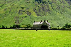 if i never see the english evergreens i am running too (plot19) Tags: uk greatbritain england house lake green english field grass stone landscape photography northwest hill north lakedistrict hills cumbria fields northern wastewater plot19