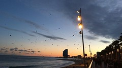 #Barcelona #Barceloneta #Sea #Beach #moviola (Mek Vox) Tags: barcelona sea beach barceloneta moviola uploaded:by=flickstagram instagram:venuename=barcelonetabeach instagram:venue=221804174 instagram:photo=11240983470425964957981272