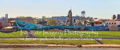 Aquarium  4200 (intricate_imagery-Jack F Schultz) Tags: mural newportaquarium cincinnatiohio jackschultzphotography intricateimageryphotography