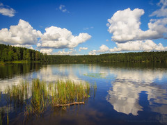A Norwegian Pond (RobertCross1 (off and on)) Tags: trees lake reflection nature water oslo norway clouds forest landscape norge pond europe bluesky olympus scandinavia omd nordmarka sognsvann em5 1250mmf3563mzuiko