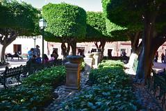 """San Miguel de Allende, México (aljuarez) Tags: park plaza miguel méxico garden square san downtown place platz jardin mexique guanajuato altstadt parc garten centreville mexiko jardín allende """"centro bajío histórico"""""""