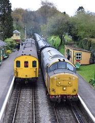 1125 & 37901 at Medstead & Four Marks. 24/4/16 (Nick Wilcock) Tags: railways thumper 1125 demu midhantsrailway 379 class37 class205 37901 dieselgala medsteadfourmarks mirleespioneer