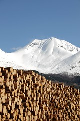 Tmmer & snfjell -|- Timber & snow mountains (erlingsi) Tags: mountains norway timber logs peak sunnmre tmmer rsta saudehornet tmmerstokker