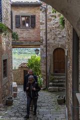 Greve in Chianti -Firenze- Marzo 2016 (Pucci Sauro) Tags: firenze toscana graveinchianti