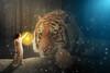 chica con tigre (Nadia.Photography) Tags: color art girl digital tiger ps fantasy photosho