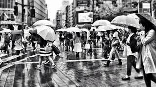 93/100 - Shibuya Crossing