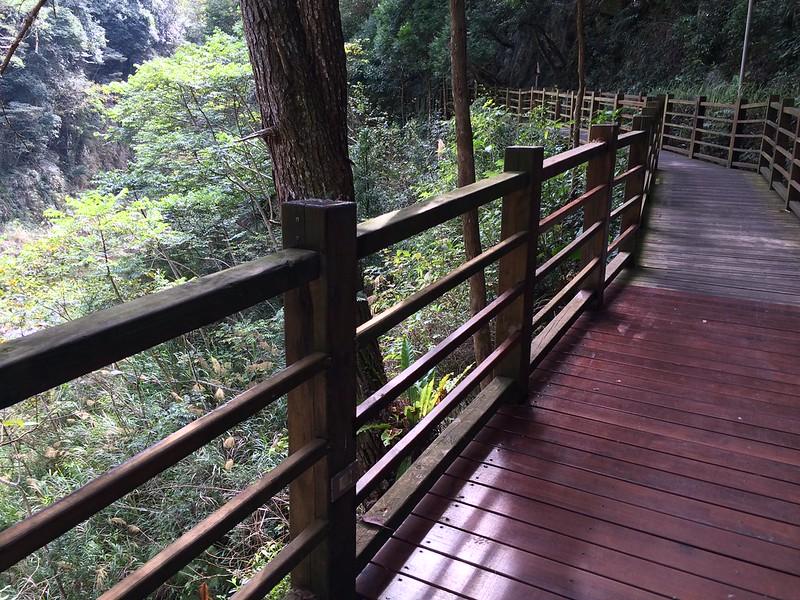 八仙山森林遊樂區-無障礙步道