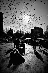 .4.9.3. (la_imagen) Tags: street people blackandwhite bw turkey trkiye trace streetlife menschen trkei sw insan turqua sokak siyahbeyaz trakya streetandsituation trakien