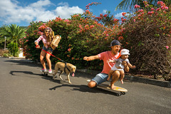 Happy family (alexeyohrim) Tags: park travel family summer vacation people woman dog baby playing man love nature girl grass childhood smiling sport modern sunrise puppy mom fun happy parents kid healthy hug kiss dad child skateboarding outdoor father skating joy daughter mother lifestyle happiness relationship human together american tropical rest leisure mauritius cuddling active