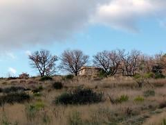 L-haut, sur la colline.... (brigeham34) Tags: france lumire hiver eu arbres paysage campagne colline fvrier languedocroussillon garrigue hrault chnes mazet cielnuageux pouzolles marchedujeudi fz45 cantomerlepouzolles
