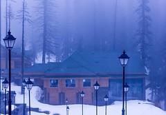 Khyber Gulmarg (D+J+) Tags: blue sunset mist snow mountains nature lamp beautiful fog hotel heaven post lamppost kashmir khyber dallake gulmarg