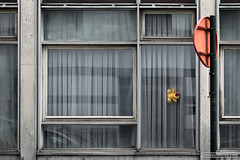Belgium, Brussels, July 2015 (bruxellisation.com) Tags: street city houses brussels house streets building window architecture facade photography grey gris town photo photographie sad belgium belgique belgie geometry maisons cit cities streetphotography bruxelles facades triste teddybear maison rue towns brussel urbanism rues ville fenetre immeuble peluche urbain urbanisme urbanphotography geometrie bruxellisation brusselization brusselisation verbrusseling cit bruxellisationcom