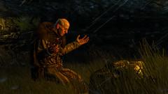 Witcher 3 (_Sylvian) Tags: screenshot games screenshots videogames gaming fantasy rpg sylvian wiedmin sylvianschronicles thewitcher3 gametoolsnet