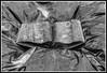 Recuerdos perdidos (edomingo) Tags: bn nikond90 edomingo nikkor1685vr