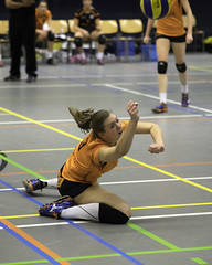 P2101669 (roel.ubels) Tags: sport arnhem setup volleyball tt 65 volleybal 2016 eredivisie topsport papendal springendal valkenhuizen