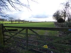 Daresbury Lane, Daresbury - field - gate (ell brown) Tags: greatbritain trees england tree field gate village cheshire unitedkingdom daresbury halton daresburylane daresburyvillage daresburyconservationarea daresburyln