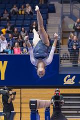 Cal gymnastics (Dakinepics00) Tags: cal gymnastics fullframe gobears haaspavilion collegesports calberkeley calbears pac12 womengymnastics sonya99 calgymnastics