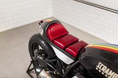 Ducati Scrambler Peace