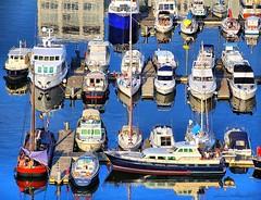Willemdok marina, Antwerp (jackfre2) Tags: marina boats mas dock belgium antwerp yachts vessels willemdok