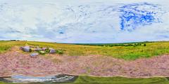 Detour Trestny, near the village Pesogory (ilya_yakunin) Tags: panorama nature canon landscape landscapes village russia 360 360x180 spherical 360 sphericalpanorama equirectangular 18135 photosphere 550d canon550d canoneos550d  trestna