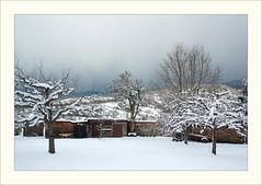 DSCF2984 (Frank Dpunkt) Tags: winter fujifilm murgtal sigma2418 s5pro