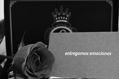 da del amor (Alien Mascarenhas) Tags: blackandwhite flores 50mm nikon pretty box valentine caixa rosas pretoebranco valentinesday alfajores alfajor cajas negroyblanco diadosnamorados happyvalentinesday dadelosenamorados d5100