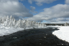 Midway Geyser Basin Ghost Trees (2016-02-02 4901) (bechtelsf) Tags: trees winter white snow water river nationalpark nikon yellowstonenationalpark yellowstone wyoming ghosttrees midwaygeyserbasin d810