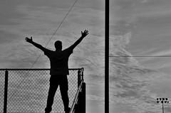 Escape (Calley Piland) Tags: fence freedom free invitation