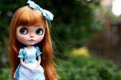 Alice Adventures ~ (voo_doolady) Tags: by blythe custom rowan aliceinwonderland blythedoll penguinbabymomo