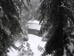 Venturer Cabin Camp