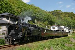 C11-325 (piero-kun) Tags: japan steam sl locomotive c11    c11325