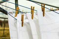 Familiar -- 72/366 (auntsuzy) Tags: laundry clothesline dailyphoto clothespins 2016 cy365 day72366 366the2016edition 3662016 12mar16