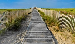 Walk to the Beach (Andrew Lincoln Photos) Tags: summer beach massachusetts cape cod andrewlincolnphotographer