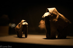Gorila (lunadiezdelalastra) Tags: lighting light espaa art beauty animals museum origami dad arte artistic son zaragoza animales museo curious belleza gorila iluminacin