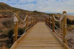 16021026C (egretta12) Tags: playa pasarela calblanque