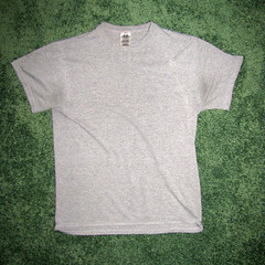 t shirt 01a (seanduckmusic) Tags: tshirts blouses witsendep