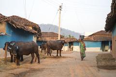 Rural village - Kawardha - Chhattisgarh - India (wietsej) Tags: street india zeiss rural village sony 18 55 chhattisgarh kawardha sel55f18z a7rii